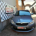 "Skoda Fabia 1.4 TSi RS ""Need for speed"""