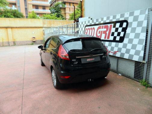 Ford Fiesta 1.4 td powered by 9000 Giri