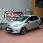 "Elaborazione Ford Fiesta 1.4 td ""Mammasantissima"""