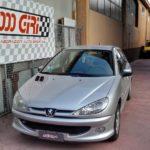 """Elaborazione Peugeot 206 1.6 16v """"Smartphone"""""""