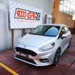 "Elaborazione Ford Fiesta 1.0 Ecoboost ""Happy Days"""