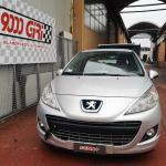 "Elaborazione Peugeot 207 1.4 hdi ""Badoo"""