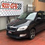 "Elaborazione Skoda Fabia Wagon 1.6 tdi ""Gallery progress"""