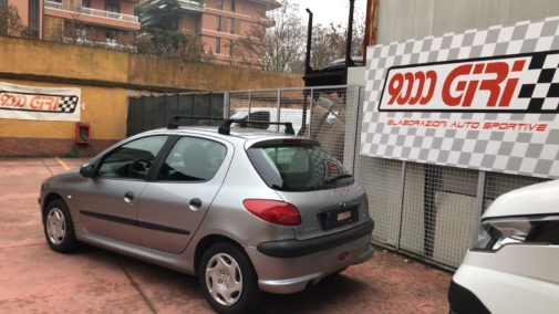 Peugeot 206 1.4 powered by 9000 Giri